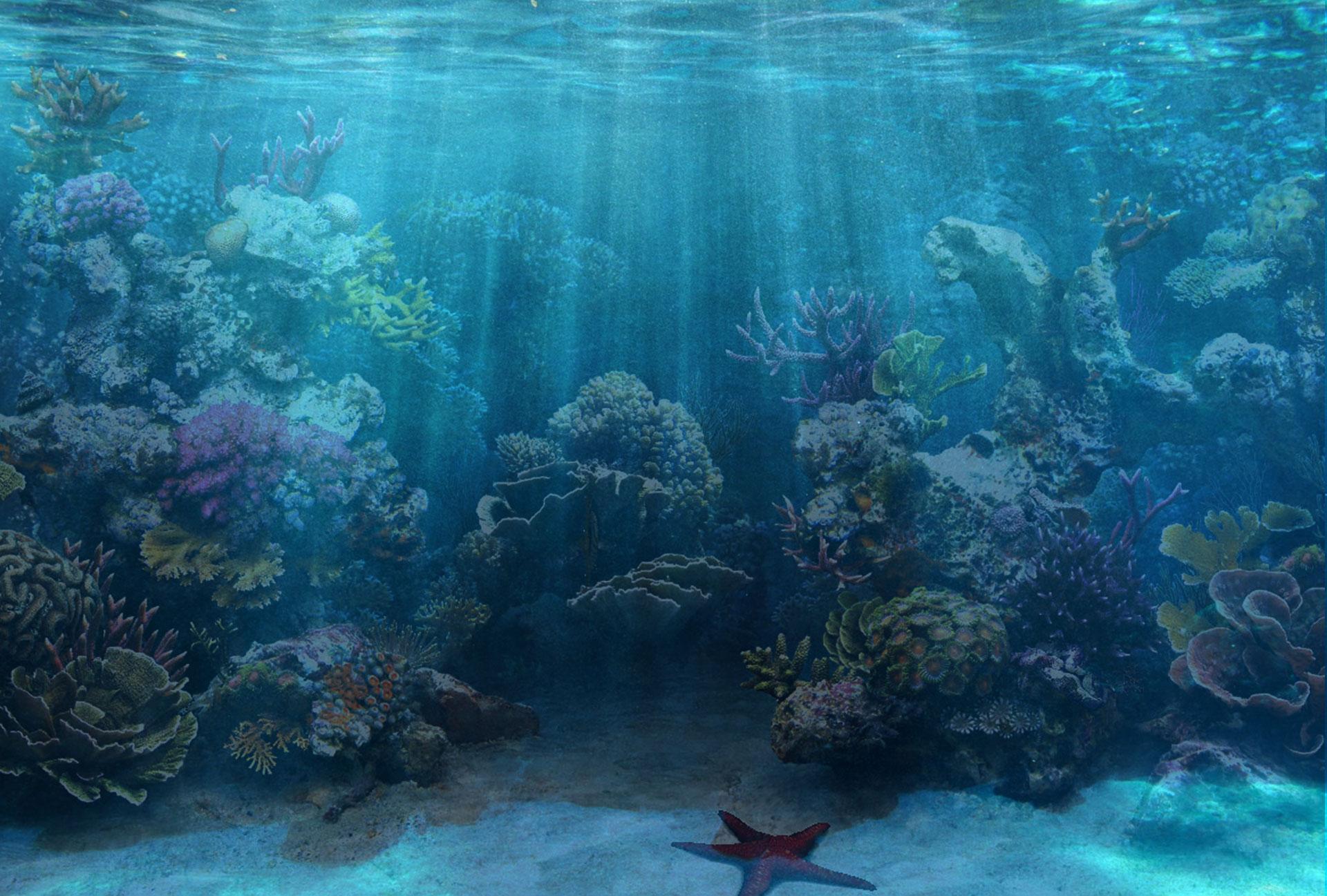 50 best aquarium backgrounds to download print free for Blue fish aquarium